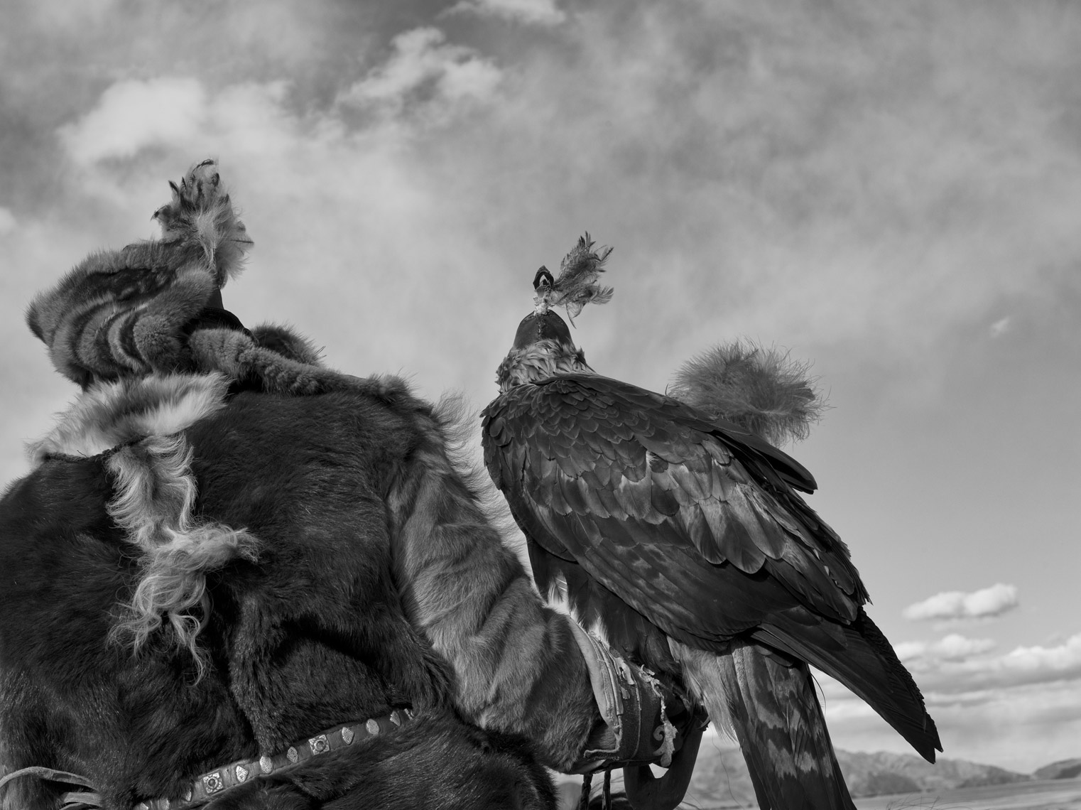 Hunting-with-Eagles-Final-Edit-TIFF11