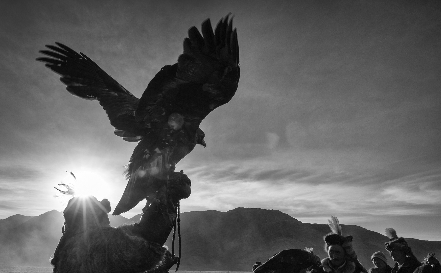 Hunting-with-Eagles-Final-Edit-TIFF19