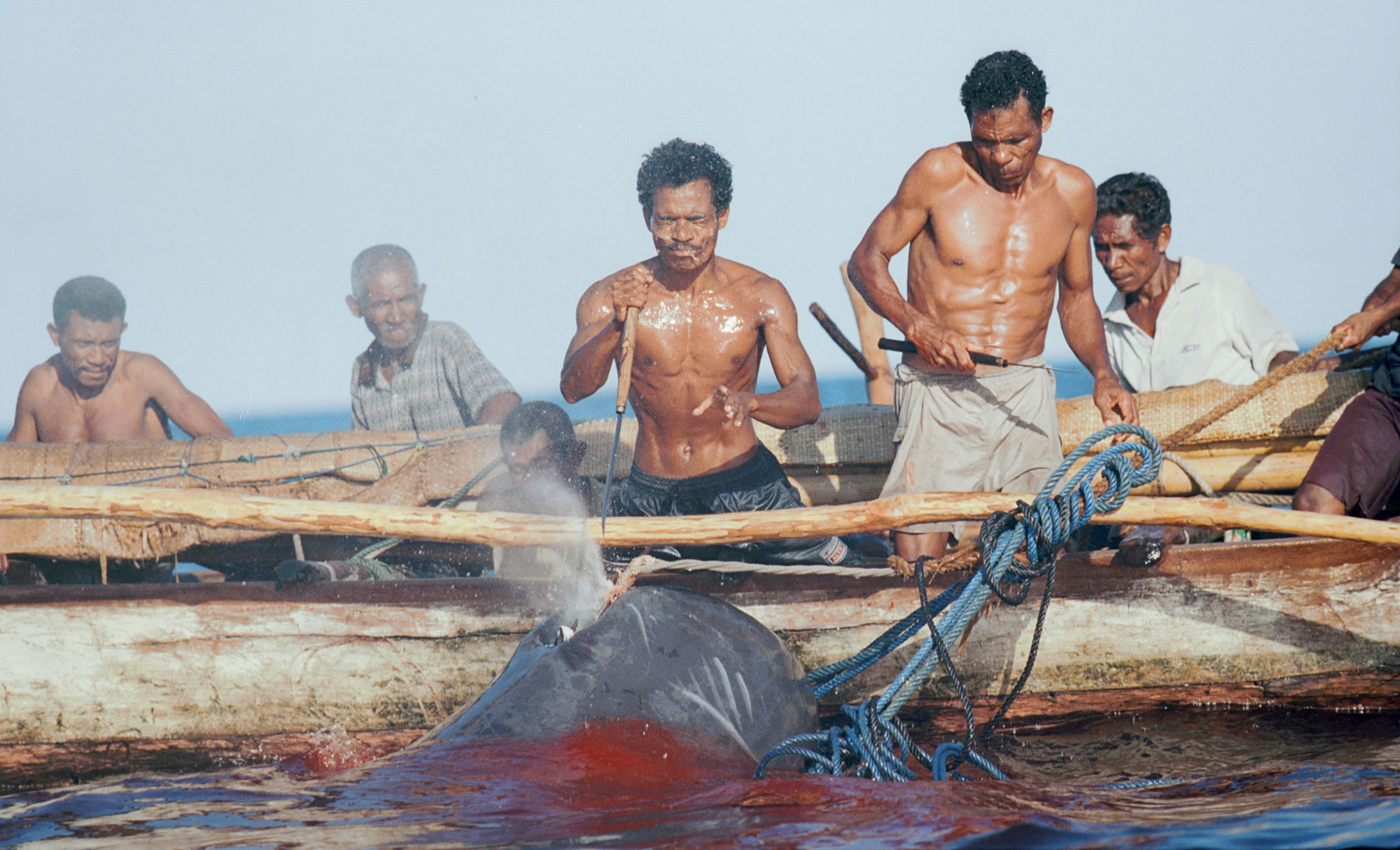 Whale-Hunters--Indonesia044